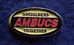 AMBUCS Membership Pin